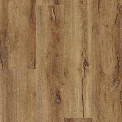 Moduleo IMPRESS | dřevo | Mountain Oak 56440