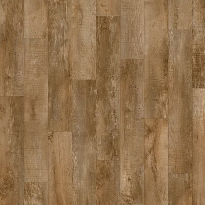 Moduleo SELECT CLICK | dřevo | Country Oak 24842