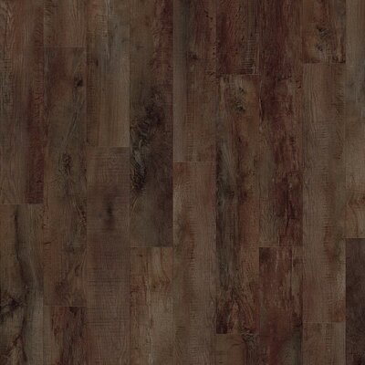 Moduleo SELECT | dřevo | Country Oak 24892